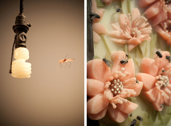 navarro_silverthorne_lightbulb_roses