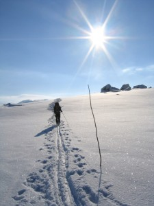 Cross-country Skiing in Norway. Photo: Lars Verket/MFA.