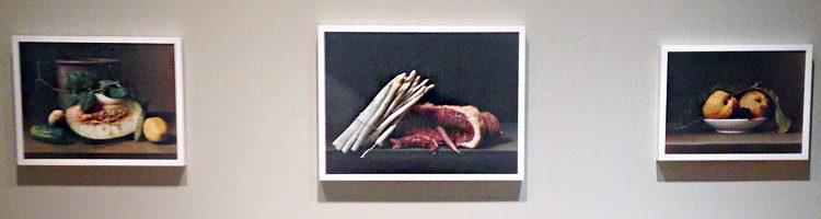 sharon-core-still-life-photos-banner
